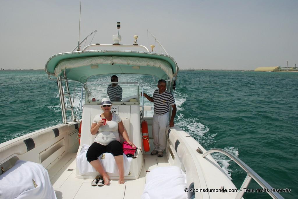 Inévitable pour voir les Dauphins en liberté à Bahreïn, la sortie en bateau.