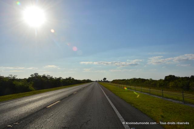 La route classique qui traverse les Everglades