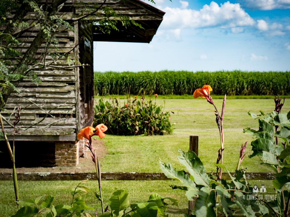visiter laura plantation louisiane nouvelle orleans-11